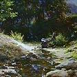 Ручей в горах