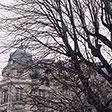 Ветки Парижа