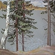 Vyatskiy forest series. Spruces near the lake