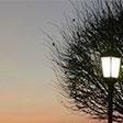 Вечерний свет
