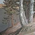 Vyatskiy forest series. September